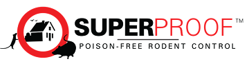Superproof: Exhibiting at the B2B Marketing Expo